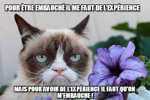 Pour être embauché il me faut de l'expérience, pour avoir de l'expérience il faut qu'on m'embauche